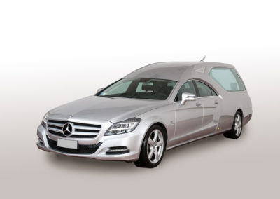 Mercedes Limousine argento metallizzato