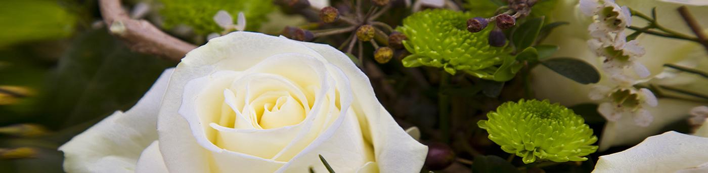Arte floreale Fiumicino