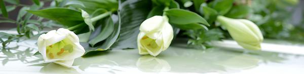 Informazioni cosa fare in caso di lutto Fiumicino